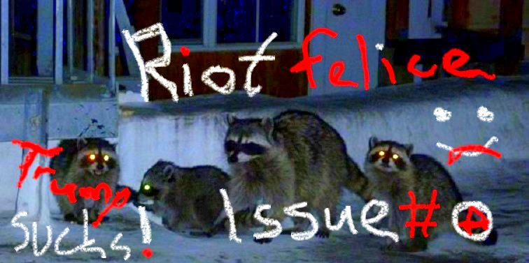 raccoon-family-issues